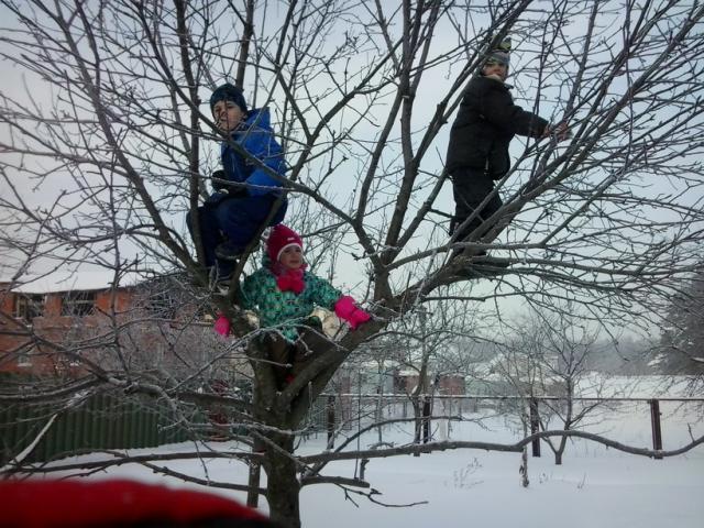 Зимой по деревьям лазить куда удобнее, и листья не мешают и падать не больно!